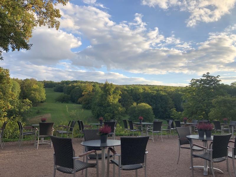 Blick in den Park von Schloss Ettersburg